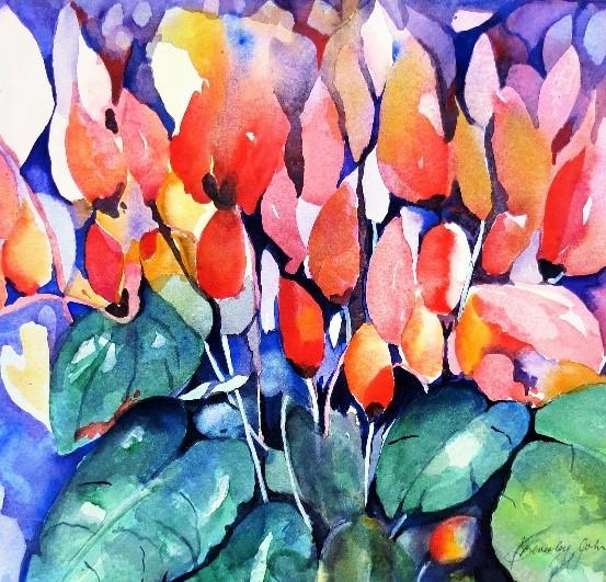 Cyclamen Colour